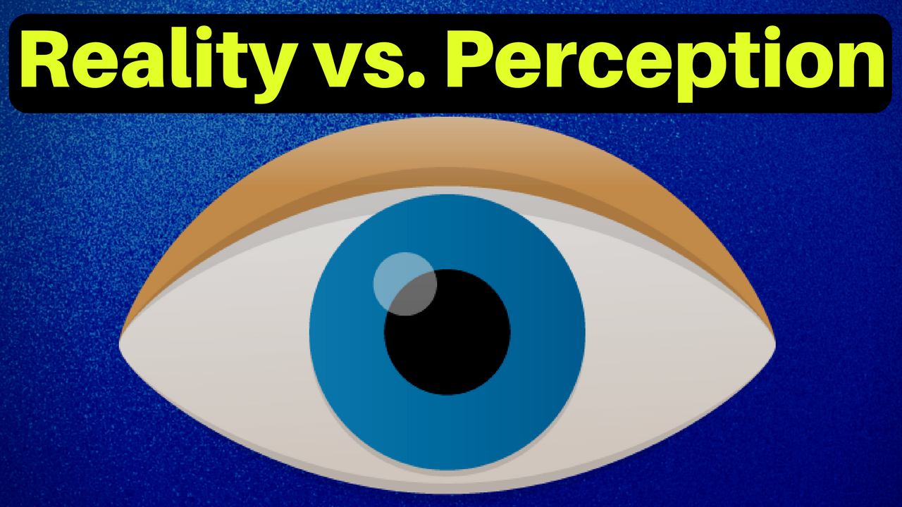 Reality vs. Perception